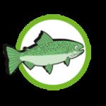 Symbol_Fisch-150x150