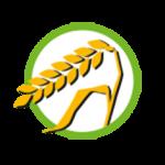 Symbol_Glutenhaltiges_Getreide-150x150
