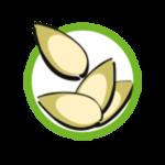 Symbol_Sesam-150x150